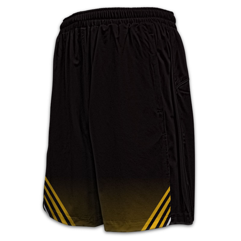 Cricket - Panelled Sport Shorts - 6