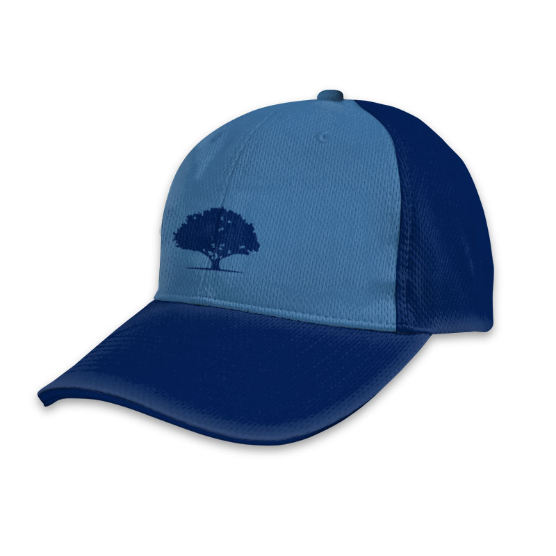 Custom Cricket T20 Sports Cap 002