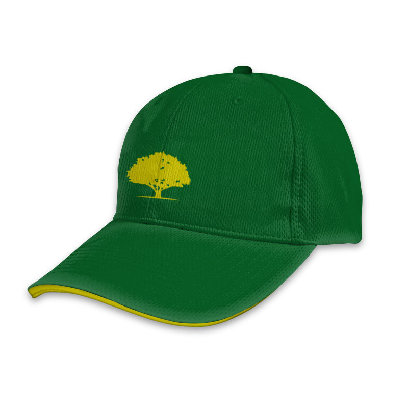 Custom Cricket T20 Sports Cap 007
