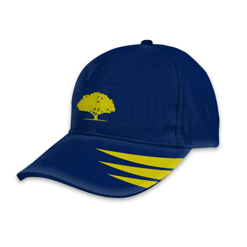 Custom Cricket T20 Sports Cap 008